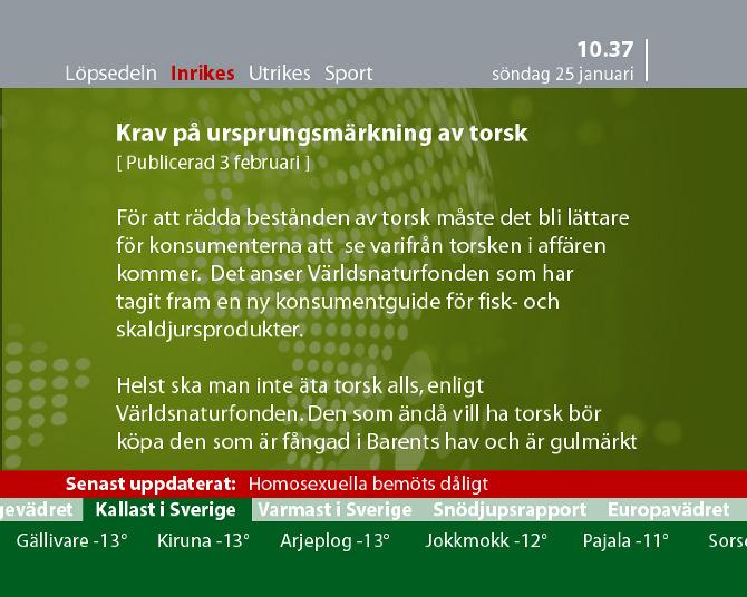 svt24 sport