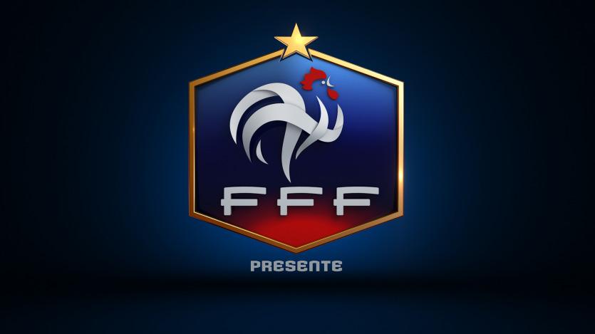 Equipe de France de football - Télévision