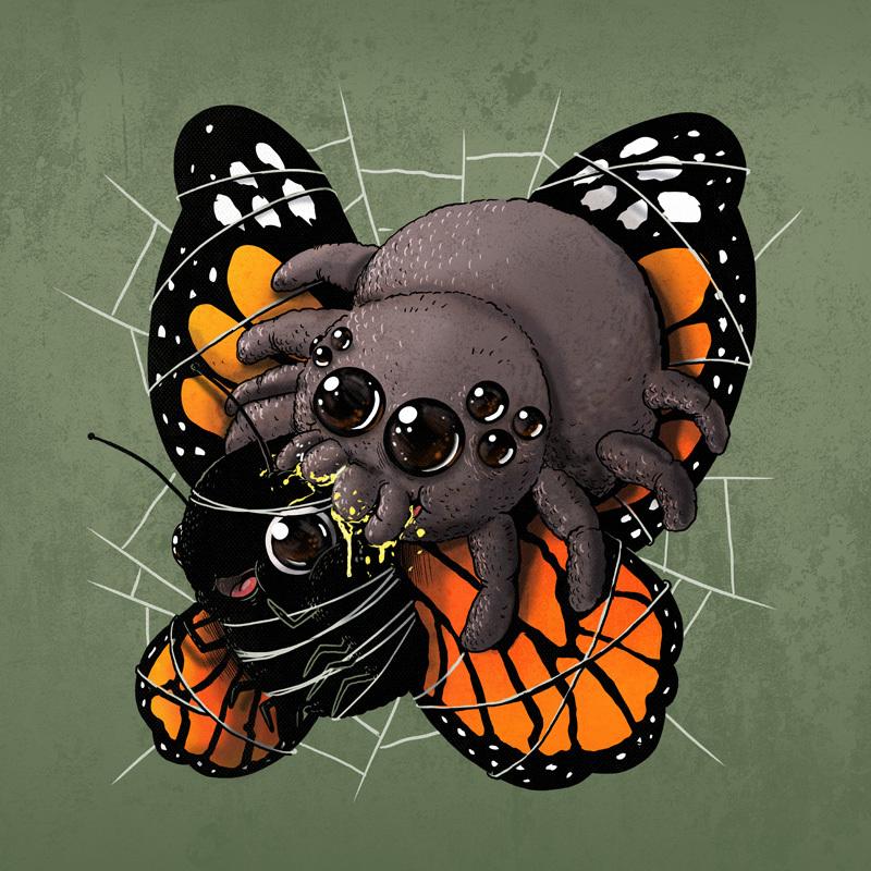 spider_butterfly_800.jpg
