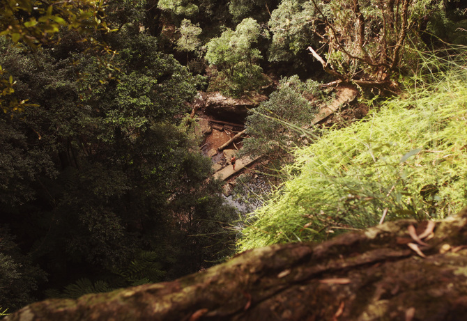 Twin Falls, Springbrook National Park - The Travelling Light