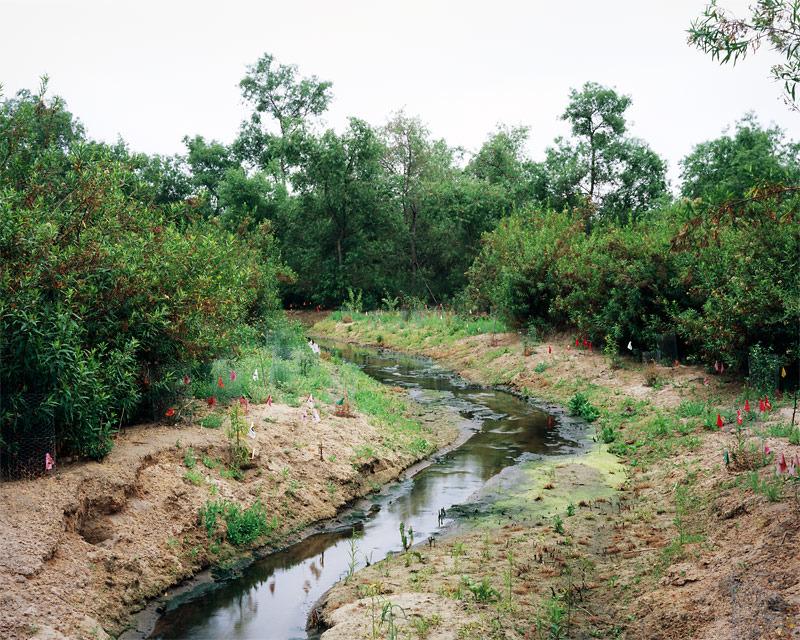 A Future In Landscaping - Chris Dea