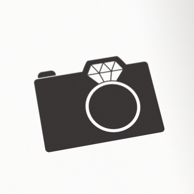 wedding photographer logo excites the portfolio of