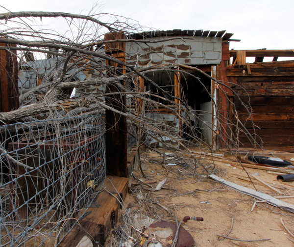 Best Windows For Desert Climate Reflections Series: CRISTOPHER CICHOCKI : CRISTOPHERSEA.COM