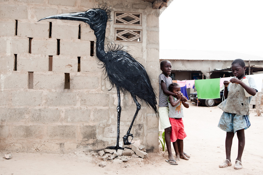 Roa In The Gambia