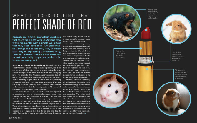 the evils of cosmetic animal testing essay