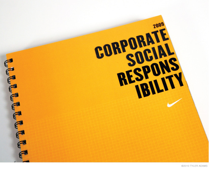 Corporate social responsibility essay writing help | CSR Term paper ...