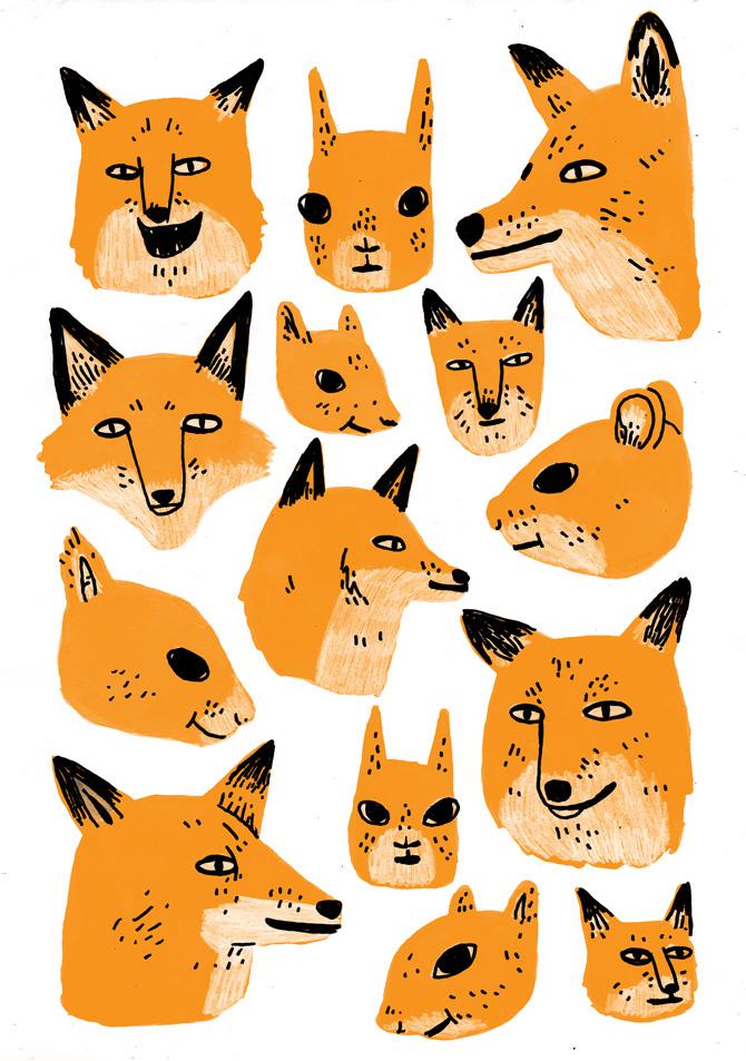Jack Teagle Foxes
