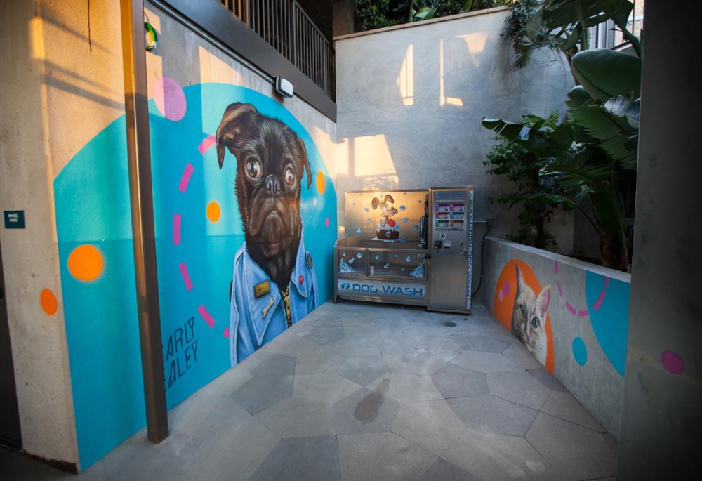 Pug Life Mural At Broadstone Np Carly Ealey Art Photo