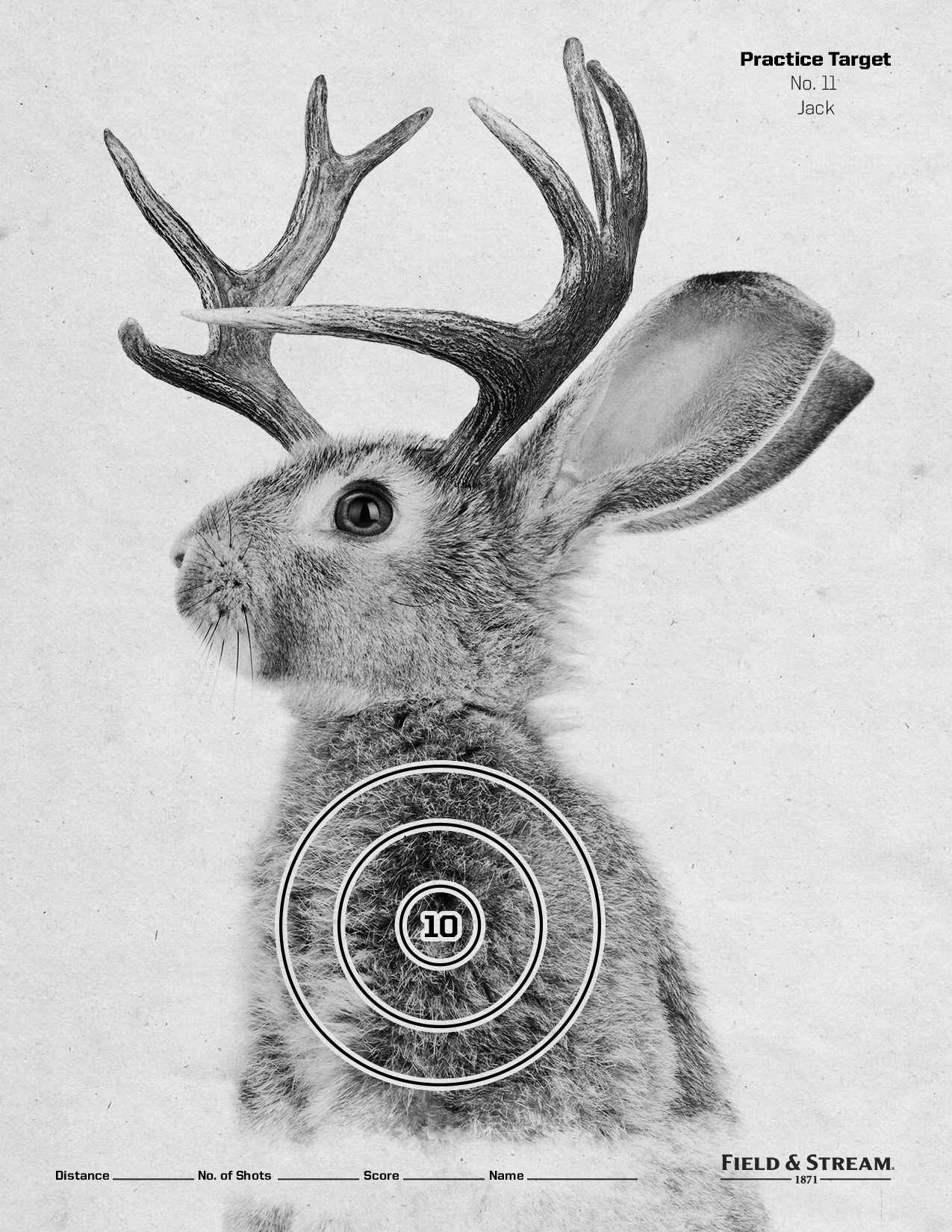 photograph regarding Printable Animal Targets referred to as Market Move : Printable Objectives - Dan Magdich : Director