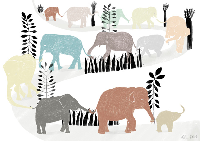 Elephant chain - Rachel Sender Graphic Design & Illustration