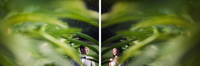 Singapore Botanic Gardens pre-wedding photo