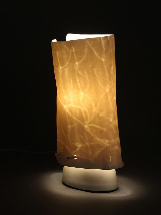 Companion Lamps Carol Koffel