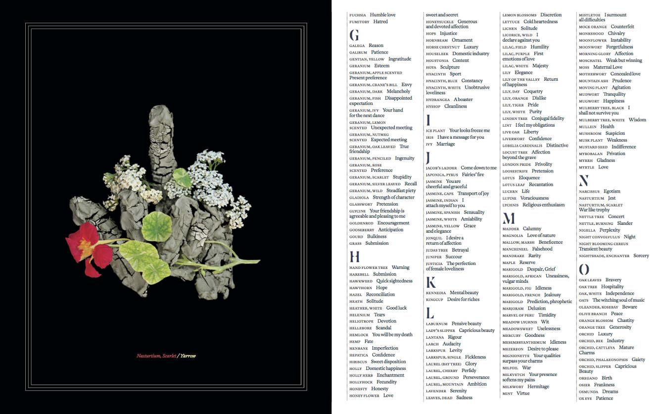 Floral Dictionary - Karen Azoulay