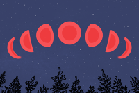 blood red moon january 2019 denver - photo #41