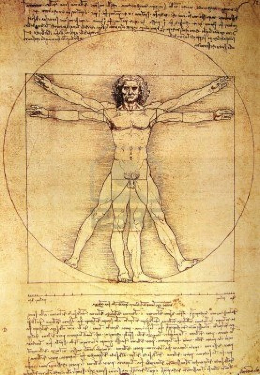 The Vitruvian Man Renaissance Man