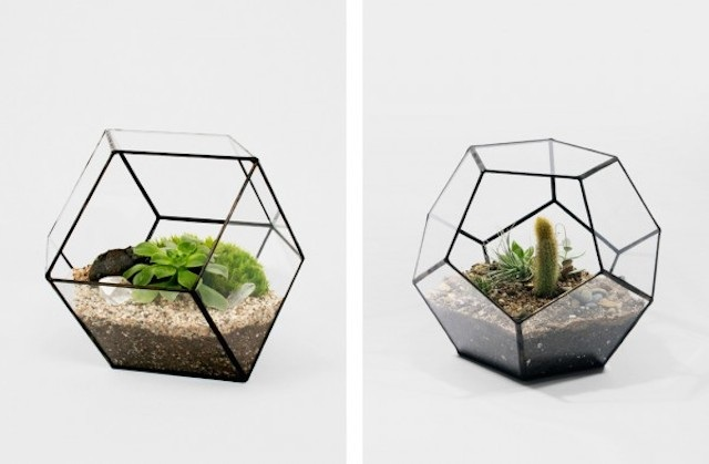 Design: score solder terrari e lampade in vetro osso magazine
