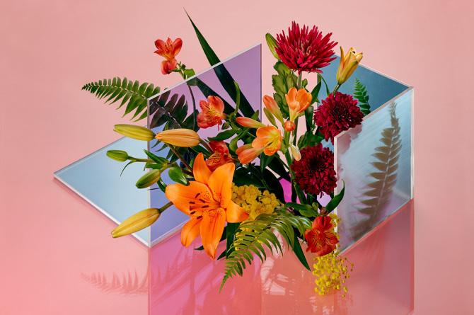 FOTOGRAFIA  Le fasi della vita dei fiori in foto - Osso Magazine 0ed62d41127