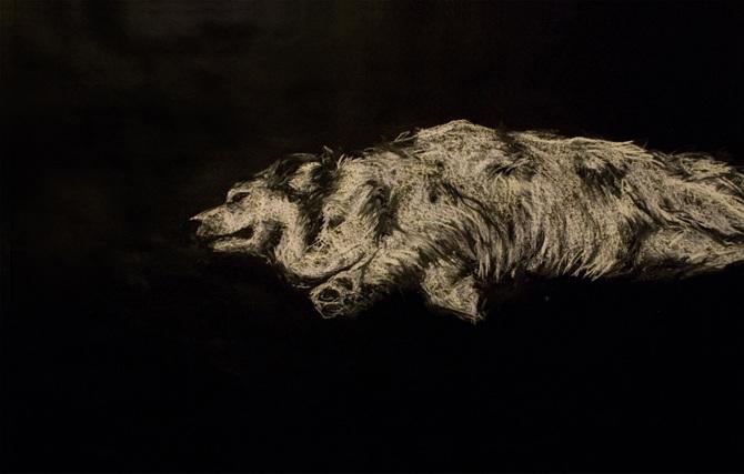 mon chien est mort - corpus  2012 - 2013