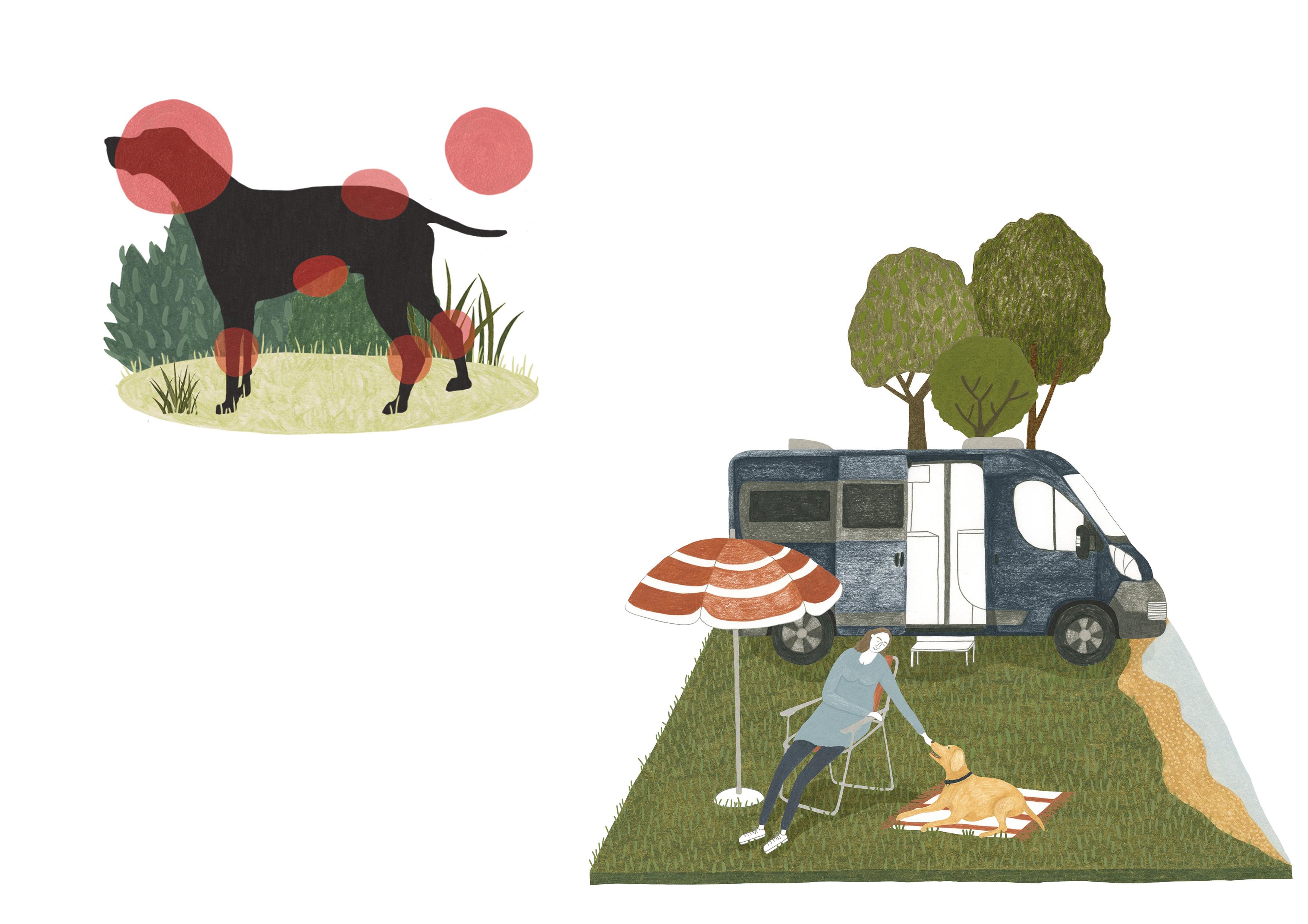 Ticks & Holidays with dogs - Melanie Gandyra Illustration