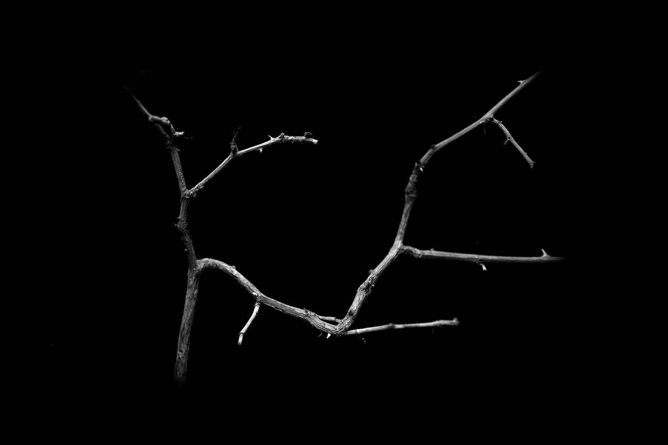"""Resultado de imagen de Materia de sombra"""""""