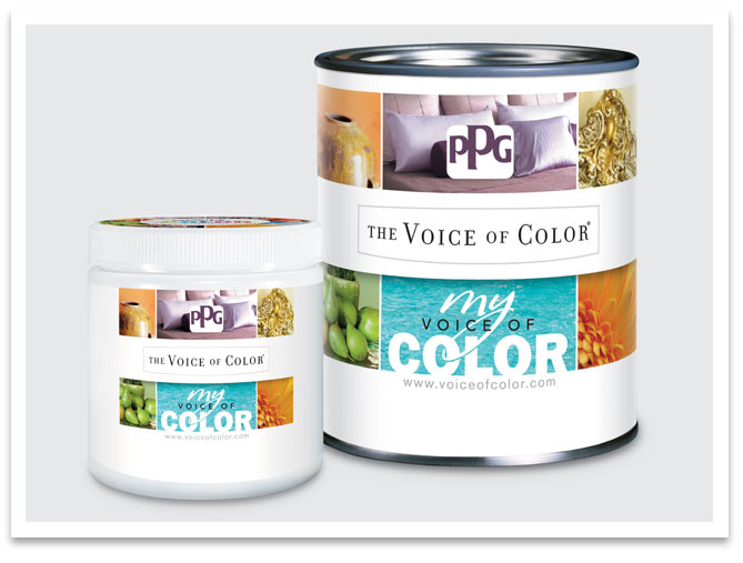 Ppg Voice Of Color Vorpdesign