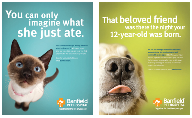 Banfield Pet Hospitals Rebrand A Tyler Martin Ad