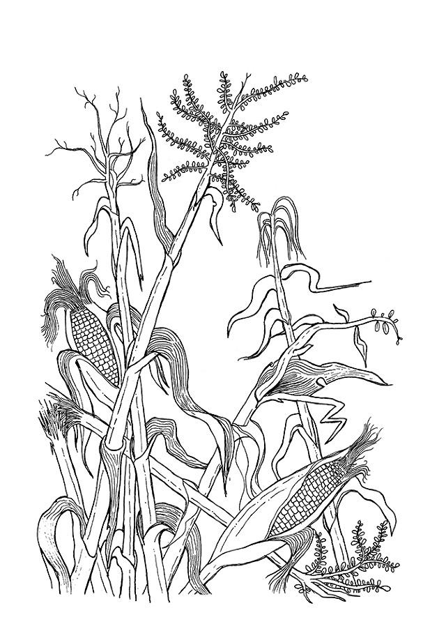 Doodles amp Sketches A Nilsson
