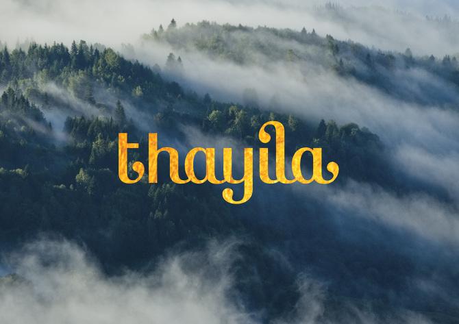 Thayila Tea Logo Packaging