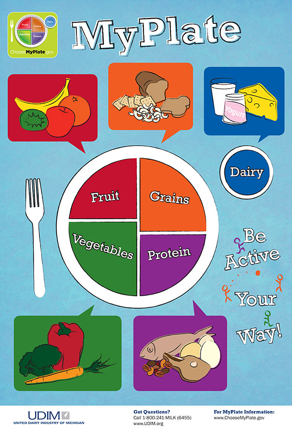 Food Guide Plate For Kids on Health My Plate Lessons