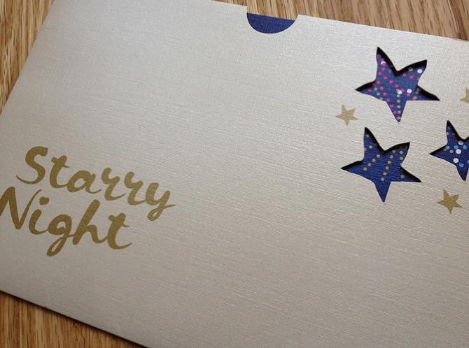 starry night sara rubinett design