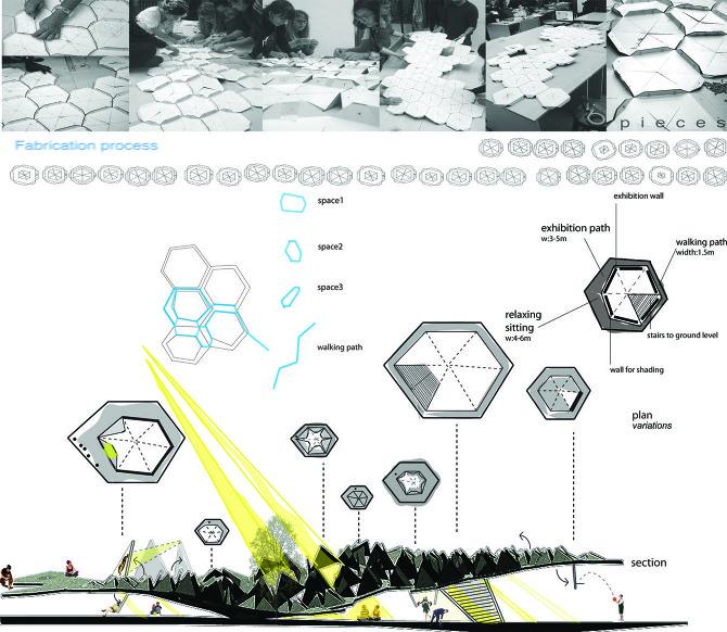 hexagonal landscape