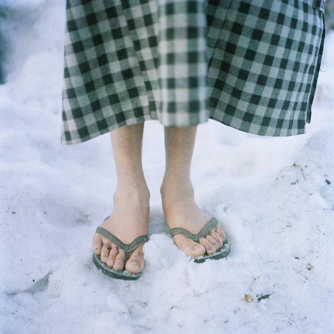 Un zèbre en tongs... au bord de la piscine.  004_sohrab-hura_snow_670