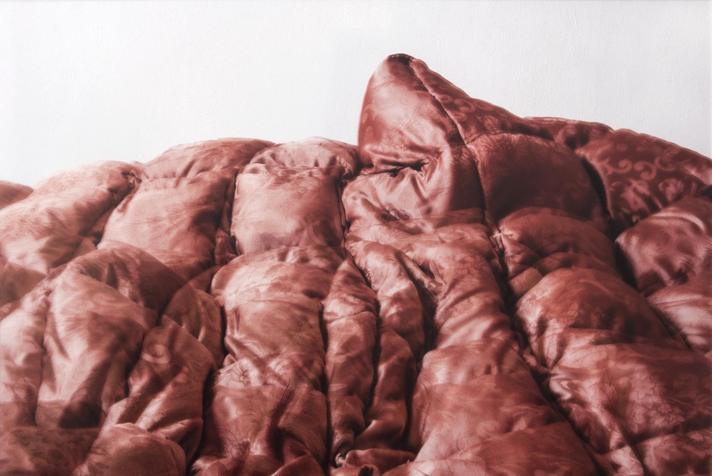 FRANCIS AM MORGEN - Julia Gaisbacher