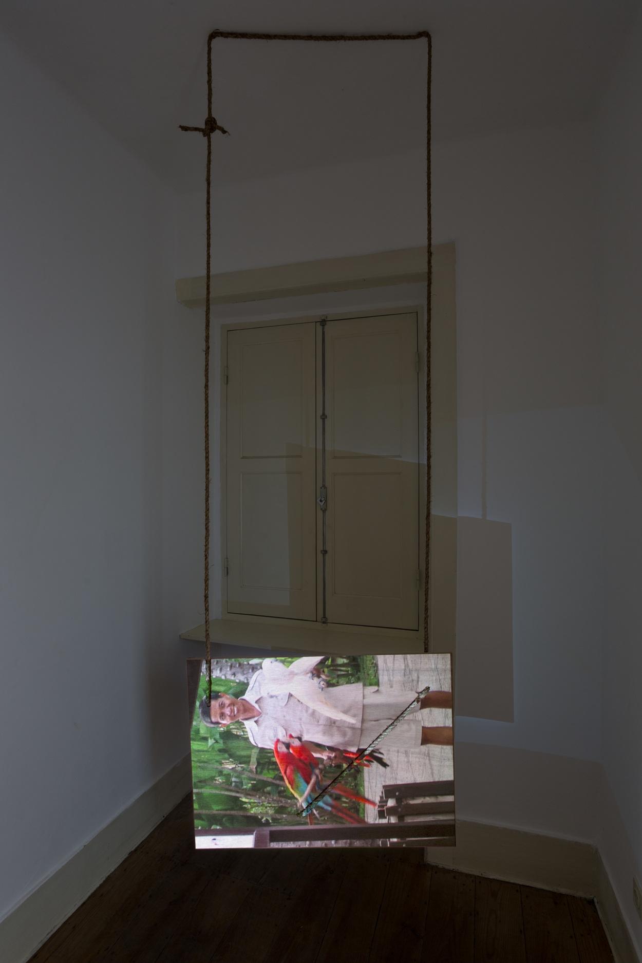 525ec5e7efbf2 Alexandre Estrela The Bird s Leg 2018 video projection on prepared wooden  screen