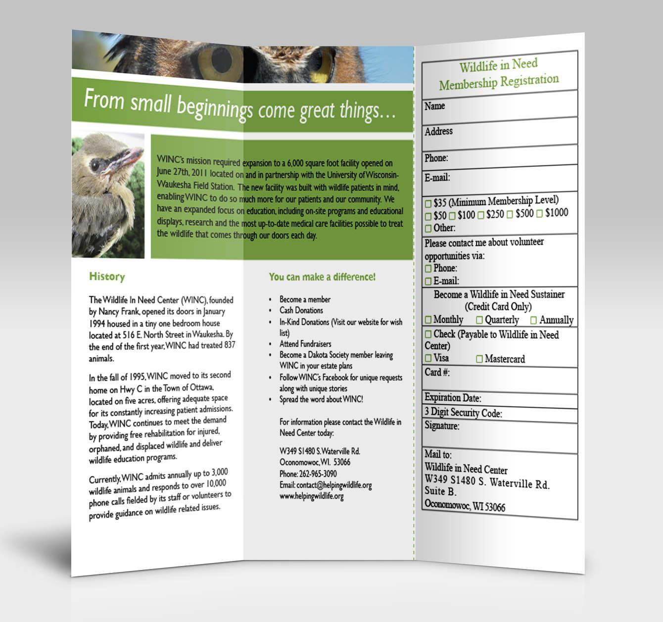 Tri-Fold Brochure Series - Kristina Kloke
