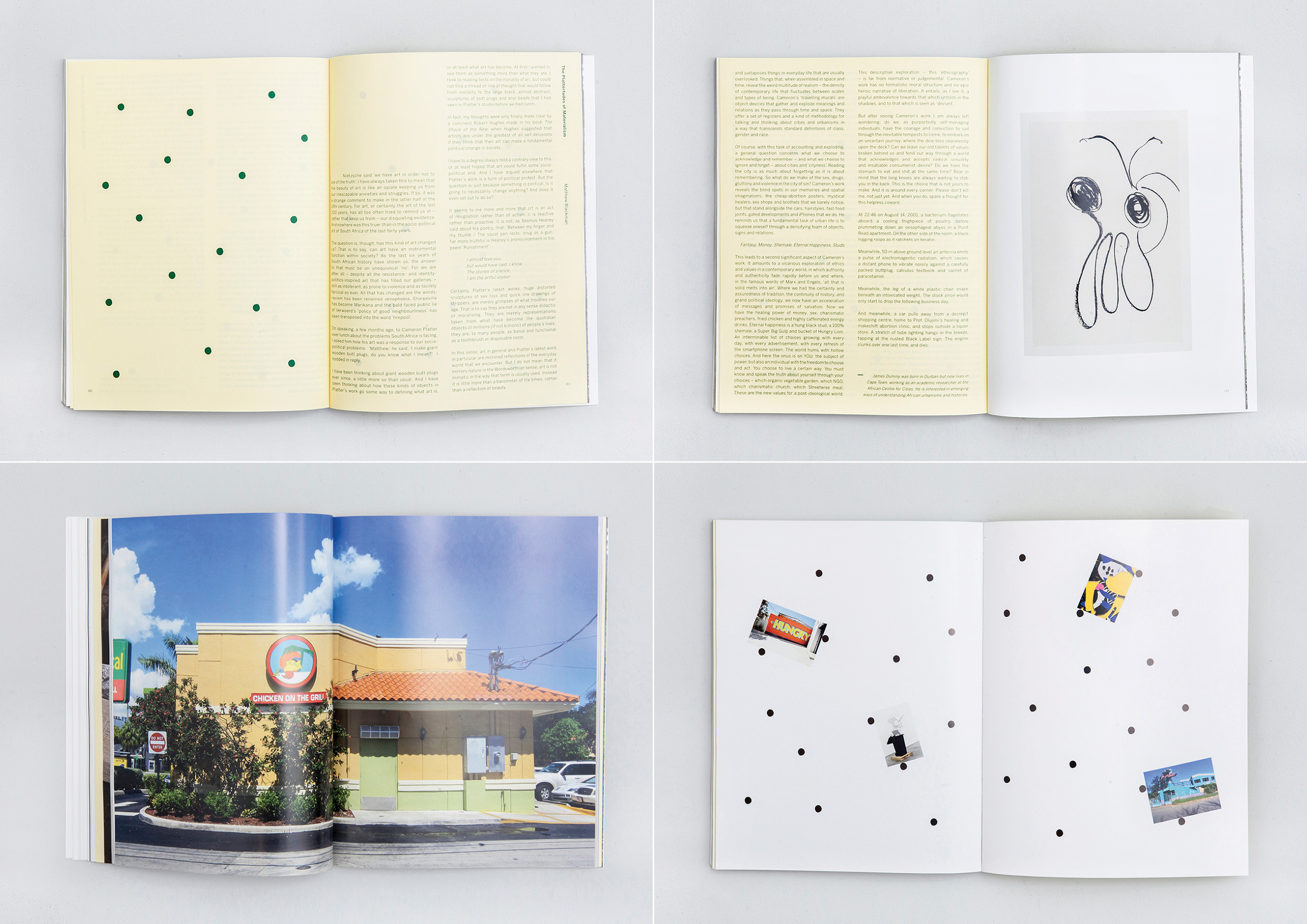 CAMERON PLATTER / I SAW THIS - BOOK - BEN JOHNSON