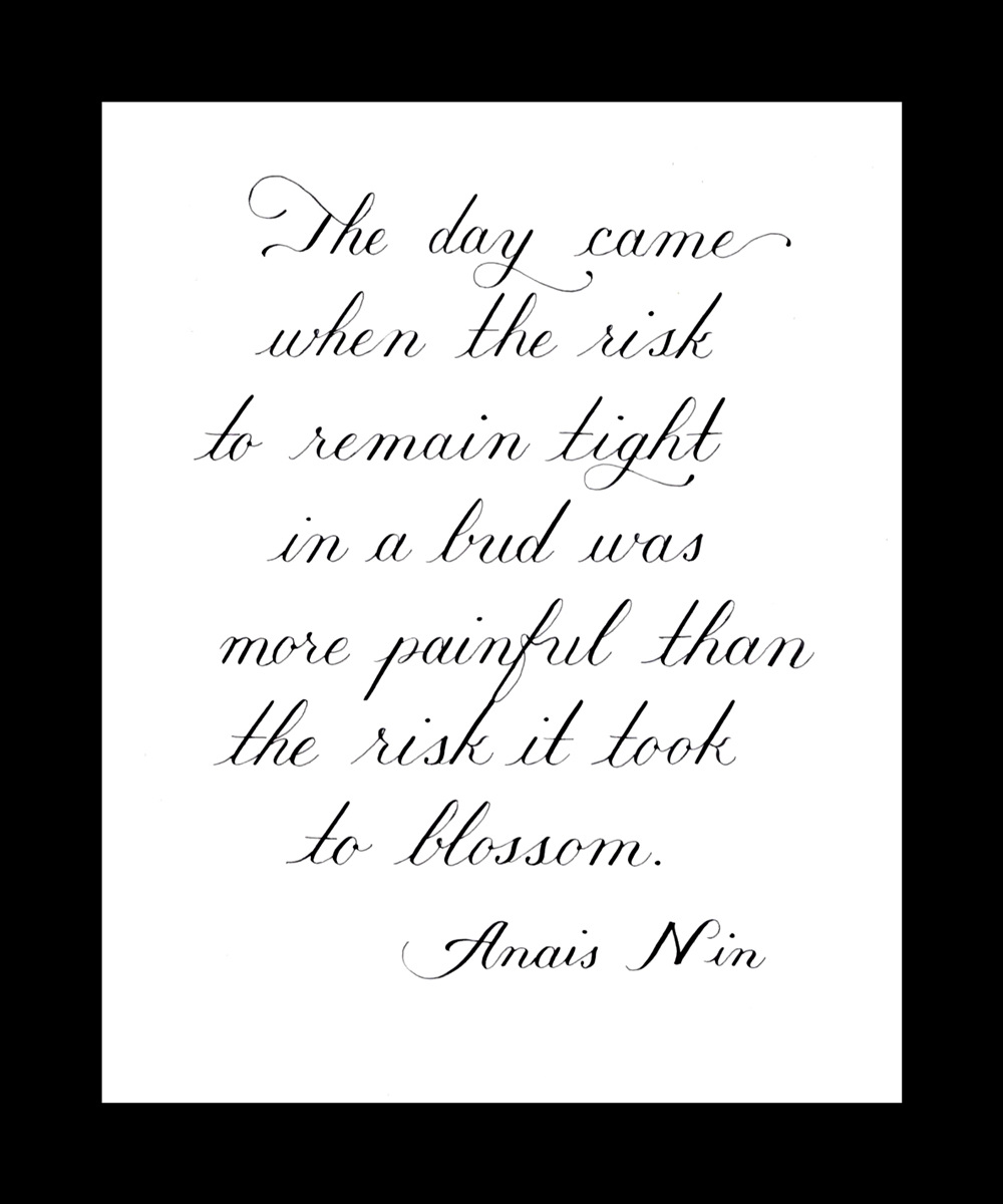 Anais Nin Quote in Copperplate - Calligraphy & Illustration ...