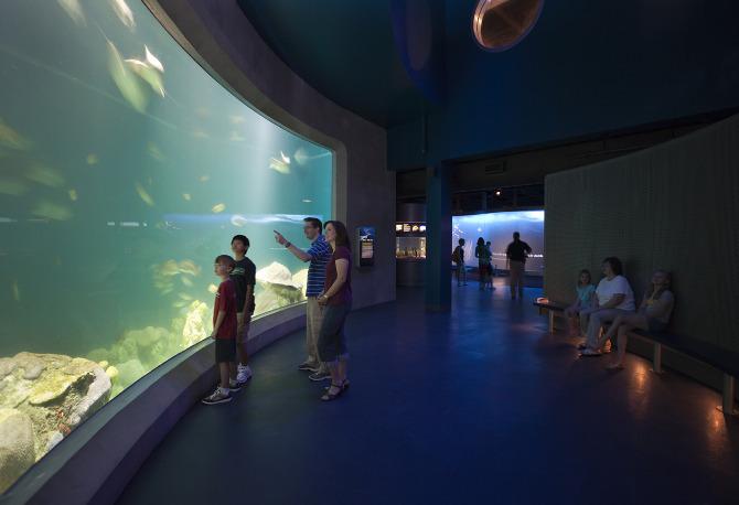 National Mississippi River Museum and Aquarium ...