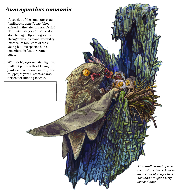 Pterosaur Tree infograpchi - Rasgorshek