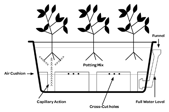 Rain Garden Self Watering Planters That Collect