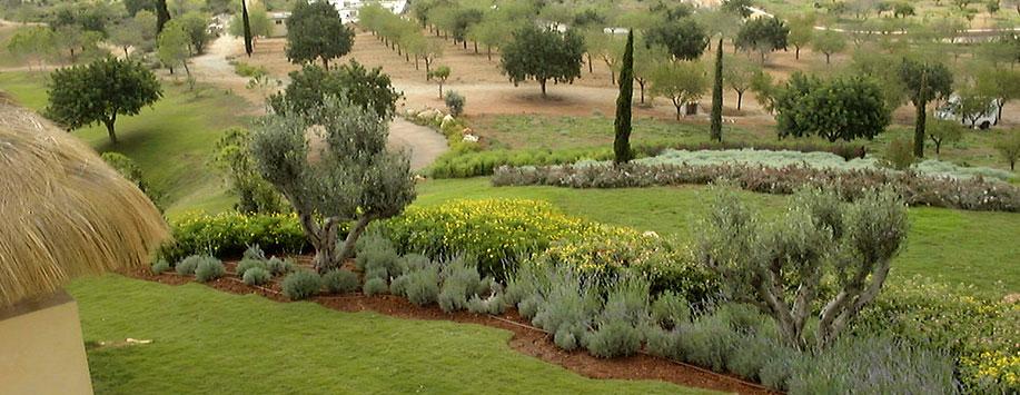 de jardines paisajismo arteche jardinera y diseo de jardines en mallorca