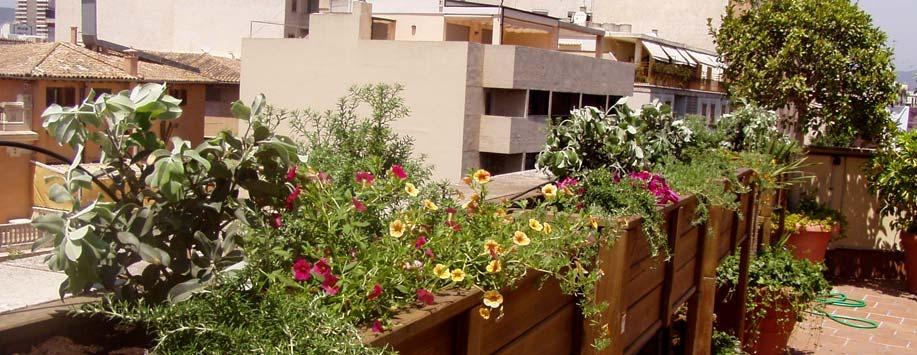 Terrazas y jardineras paisajismo arteche jardiner a for Paisajismo terrazas