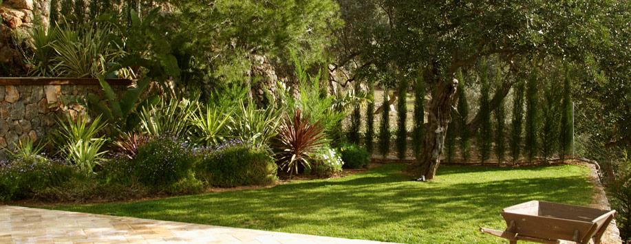 Dise o jardines paisajismo arteche jardiner a for Mantenimiento de jardines