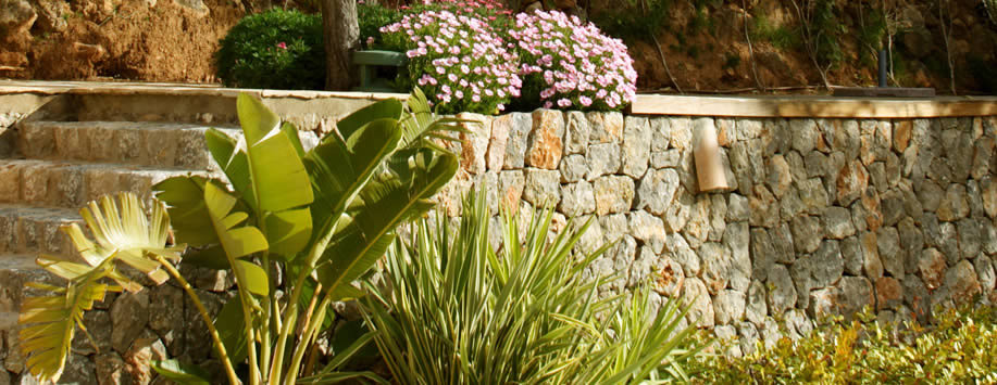 Asesoramiento a domicilio paisajismo arteche jardiner a for Jardineria a domicilio barcelona