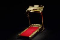 The Red Carpet Treadmill