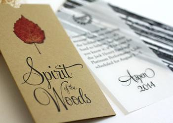 2014 Platinum Performance Club Announcement Mailer Spirit Of The