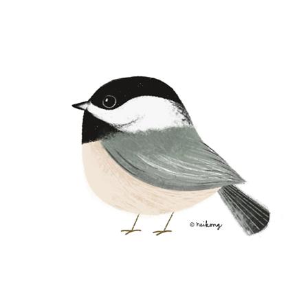 Bird Illustration - neiko art