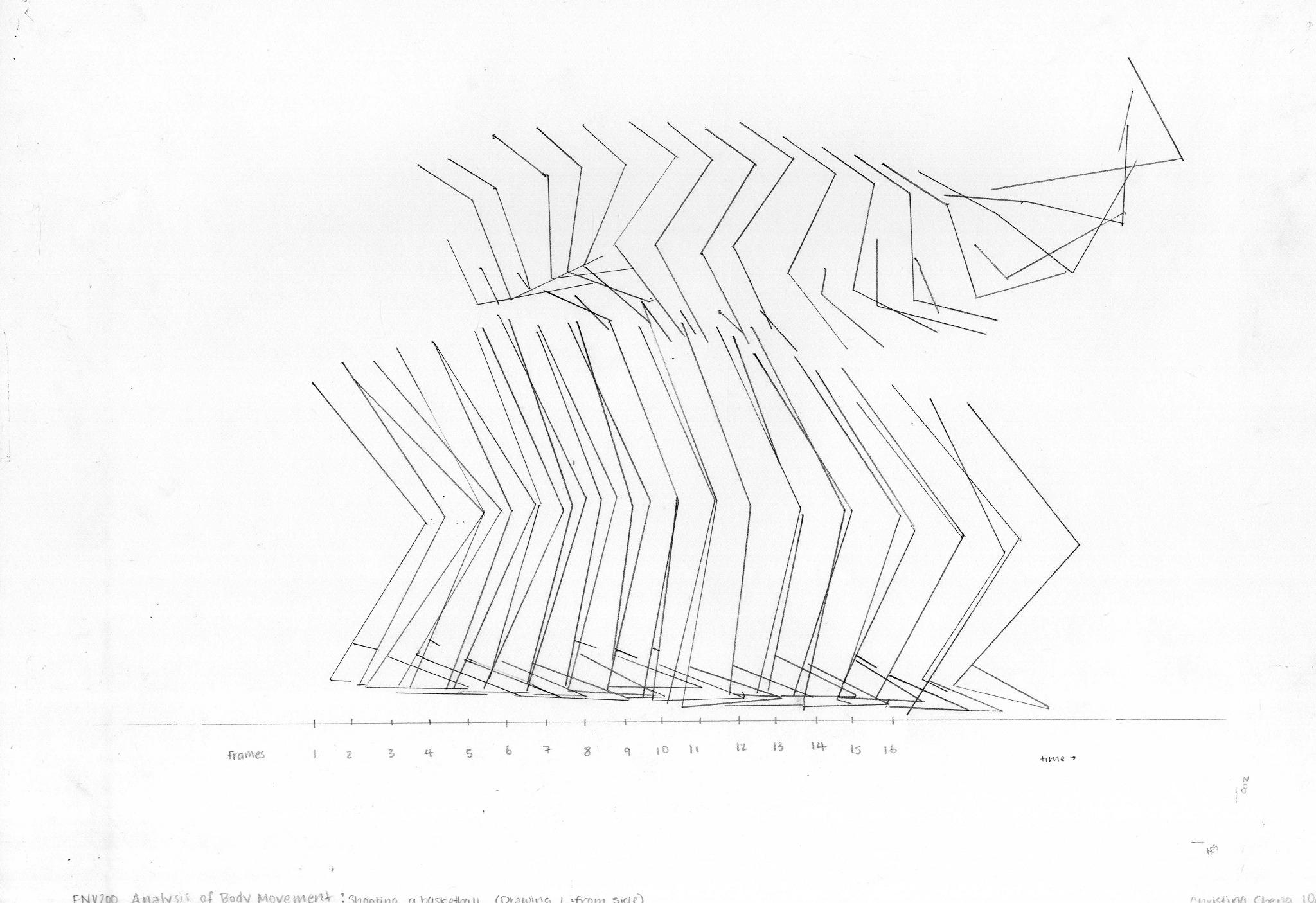 Body Movement Analysis Christina Cheng Art Design