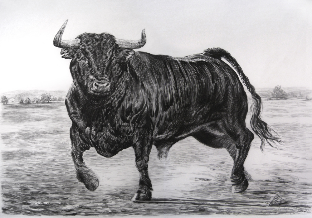 Bulls Rick Shaefer