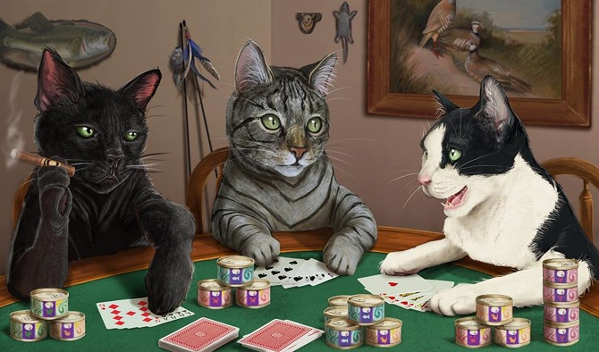 Картинка коты играют в карты видео онлайн чат бесплатно рулетка